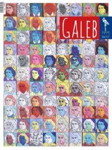 Galeb 65-6